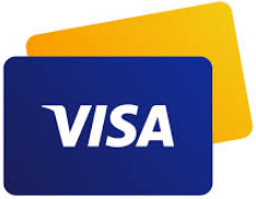 Do you know all about using Visa payments?